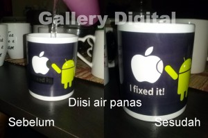 magic mug, chameleon mug