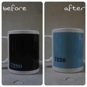 mug bunglon custom1