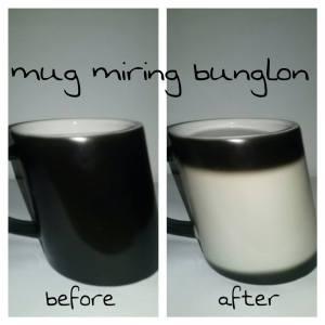 mug miring bunglon