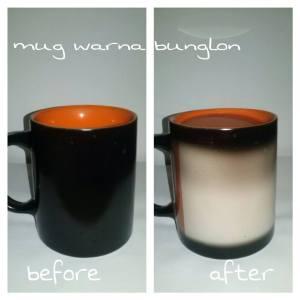 mug warna bunglon